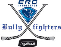 Bullyfighters
