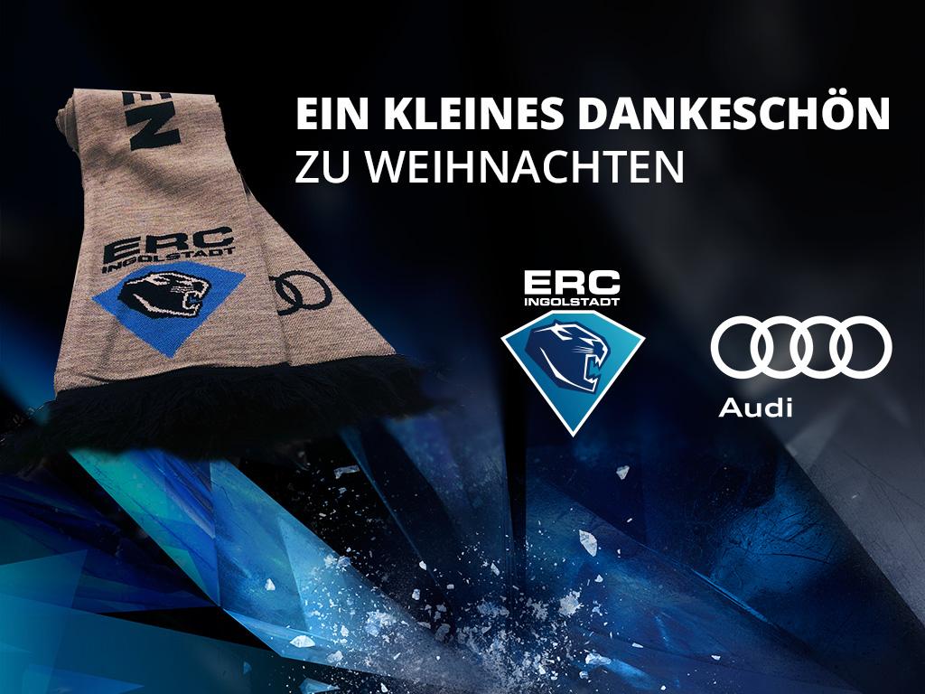 Ein Geschenk für Dauerkarteninhaber | Profis,Tickets | ERC Ingolstadt